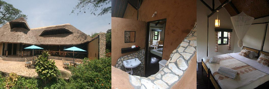 chimps-nest-accommodation-in-kibale-np