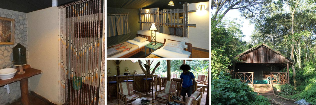 kibale-forest-camp-accommodation-in-kibale-np